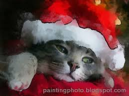 Merry Christmas Cat Meme - merry christmas cats images the best cat 2018