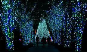 Norfolk Botanical Garden Lights Awesome Norfolk Botanical Gardens Lights Home Inspiration
