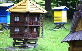 free images shed honey hut shack cottage backyard