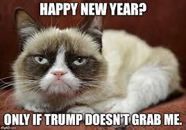Grumpy Cat Meme Happy - grumpy cat new year imgflip