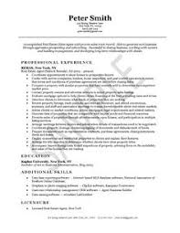 Job Experience Resume by Entertainment Executive Resume Example Executive Resume And