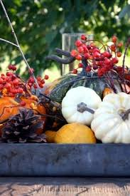 Fall Harvest Outdoor Decorating Ideas - 69 best fall outdoor decorating ideas images on pinterest fall