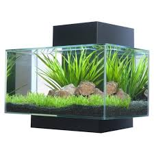 hagen 6 gallon fluval edge aquarium kit walmart