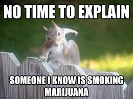 No Time To Explain Meme - 36 most funniest squirrel meme photos that will make you laugh