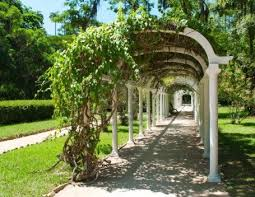 download pergola garden design garden design