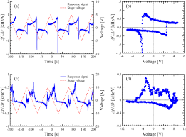 dynamic observation of ferroelectric domain switching using