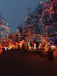 christmas lights at the zoo indianapolis forest of christmas lights was amazing picture of indianapolis