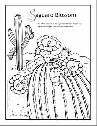 terrific cactus coloring pages with cactus coloring page