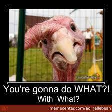 Turkish Meme Movie - poor turkey by ao jellebean meme center
