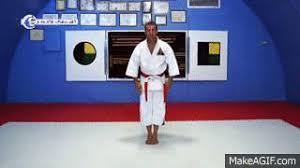 imagenes gif karate karate gif find download on gifer