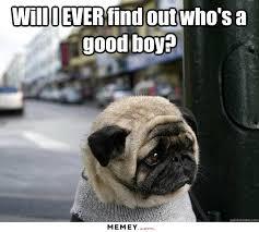 Sad Animal Memes - sad memes funny sad pictures memey com