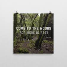 john muir dog quote come to the woods poster socal hiker