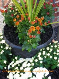 super size planter pots for pennies met u2022a u2022mor u2022pho u2022sis living
