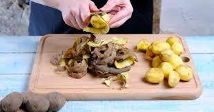 cuisiner des restes 10 solutions pour gagner du temps en cuisine cuisine az