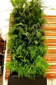 Wall Decorations Living Room by Wall Ideas Diy Living Room Wall Art Pinterest Diy Living Wall