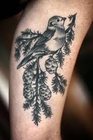 15 best pine branch tattoos design and ideas