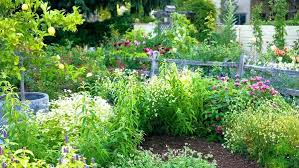 Backyard Flower Bed Ideas Landscape Flower Bed Ideas Cool Small Flower Beds Ideas In Home