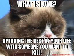 Grumpy Cat Meme Love - what is love spending the rest of your life with someone you want