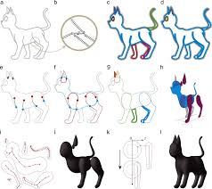 modeling 3d animals from a side view sketch sciencedirect