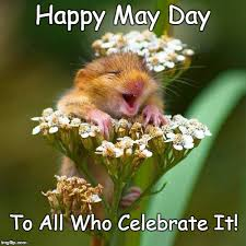 May Day Meme - happy may day imgflip