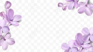 lilac color soft pastel color floral 3d illustration on violet background