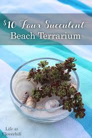 10 faux succulent beach terrarium