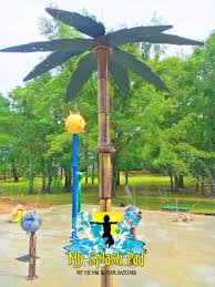 splash pad palm tree water play features