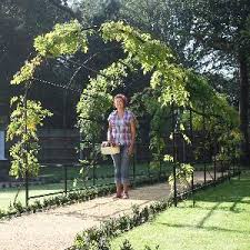 Plants For Pergolas by Pergolas Garden Structures From Allotment Shop