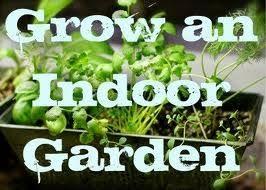 Urban Garden Supply - nodo urban garden supply