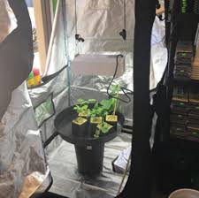 Indoor Garden Supplies - the grow hub hydroponic supplies u0026 indoor grow lights near