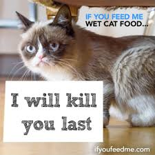 Colonel Meow Memes - famous cats help friskies spread the word about wet food pet