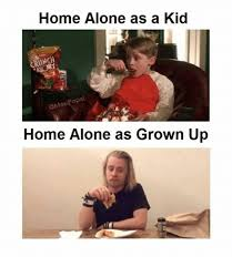 Home Alone Meme - 25 best memes about home alone home alone memes