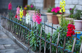 Garden Fence Decor Fence Wire Fence Ideas Lovely U201a Awful Wire Fence Plans U201a Favorable