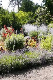 welcome to the summerland ornamental gardens