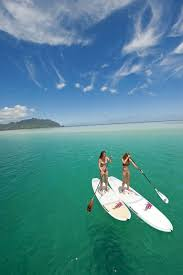 best 25 best paddle boards ideas on stand up surf