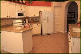 kitchens with oak cabinets and white appliances 12 beautiful kitchen cabinet color with white appliances model