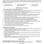 functional resume template for career change functional resume