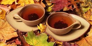 Teh Adas 5 jenis teh untuk menurunkan berat badan