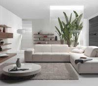 what color rug goes with a grey couch living room walls should i