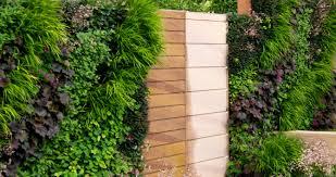 Vertical Garden Trellis - bloomiq