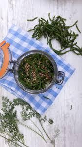 cuisiner la salicorne salicorne au vinaigre comme des cornichons du bordel dans la cuisine
