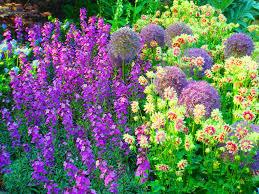 How To U2026 Create A Garden With Year Round Interest Jardin
