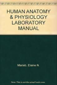 Answer Key For Anatomy And Physiology Lab Manual Human Anatomy U0026 Physiology Laboratory Manual Fetal Pig Version