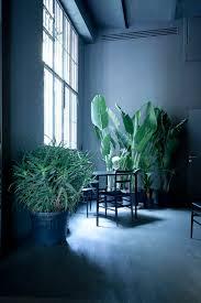 best 25 dark blue rooms ideas on pinterest dark blue walls