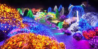 garden of lights hours the garden of morning calm 아침고요수목원 official korea tourism