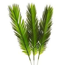 palm leaves for palm sunday 3 x artificial cycas palm leaves easter 41cm palm sunday