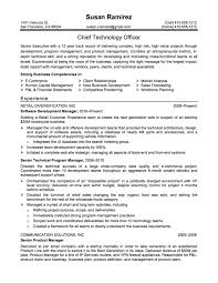 sample resume project manager learning officer sample resume template rent receipt autoplant technology consultant resume examples business analyst consultant en resume sample project manager resume 2 91 image