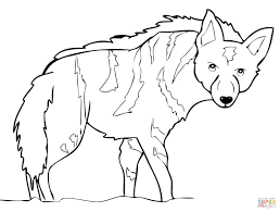 aardwolf from africa coloring page free printable coloring pages