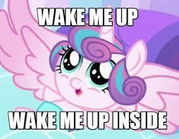 My Little Pony Meme Generator - meme creator wake me up wake me up inside meme generator at