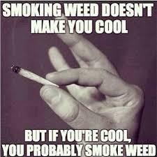 Funny Pot Memes - pin by ovidiu a mckay on men s style pinterest cannabis